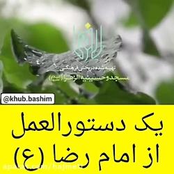 یک دستورالعمل از امام رئوف حضرت علی بن موسی الرضا علیه السلام