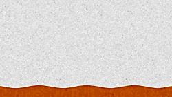 image of kidney full of stones