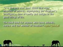 آنونس فیلم مستند «بازتاب فیل ها»