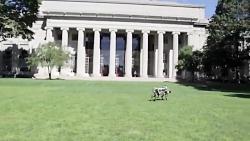 ربات چیتای جدید MIT با قابلیت پرش از موانع