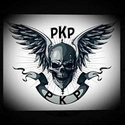 Pubg team pkp