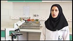 زیست، بازار زندگی ایرانی