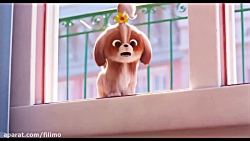 آنونس انیمیشن «زندگی مخفی حیوانات خانگی 2»