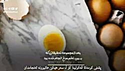 یک خبر بد برای تخم مرغ د...
