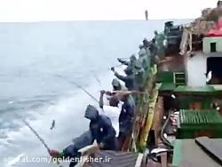 صید ماهی تُن در کشتی