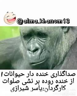 صداگذاری طنز روی حیوان...