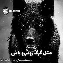 گرگ باش و پادشایی کن