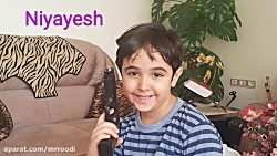 محمد رضا