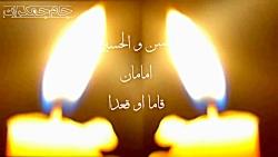 نقش امام حسن (ع) در قیام امام حسین (ع)