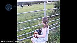واکنش حیوانات خارق العاده به موسیقی - گروه وگا