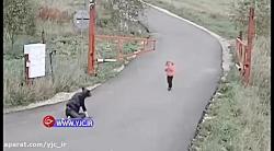 حادثه دلخراش برای زن موتورسوار و کودکش
