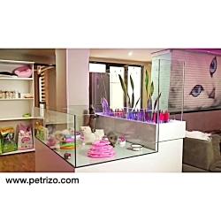 آرایشگاه+سگ+و+گربه+پتریتو+ +26742769+021+- +petrizo_com