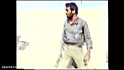 مهران حیدری