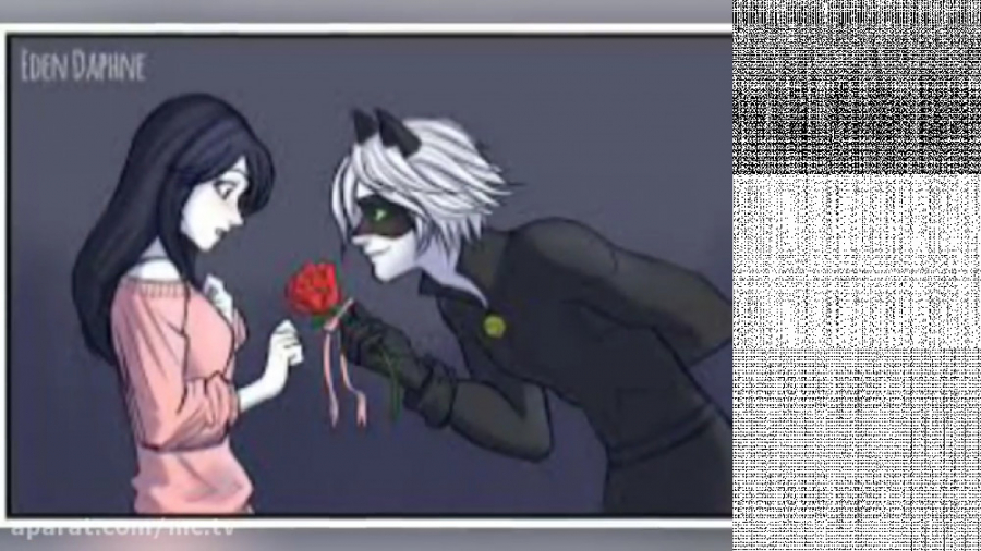 میراکلس لیدی باگ - عاشقانه لیدی باگ و کت نوایر