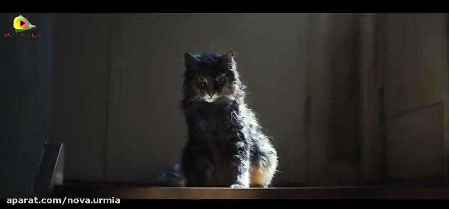دومین تریلر فیلم ترسناک قبرستان حیوانات خانگی (۲۰۱۹) Pet Sematary