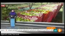 افتادن دست رنج باغداران سیب دماوند در سبد دلالان