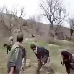 پارکور بازی یک غزال
