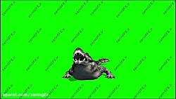 کروماکی حمله تمساح
