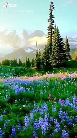 صدای پرنذگان در طبیعت ز...