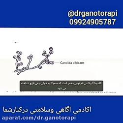 Dr.ganotorapi