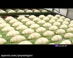 افتتاح دو کارخانه صنایع غذایی در فیروزکوه
