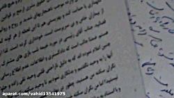 دکتر وحید تقی زاده
