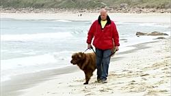 سگ علیه مرد چالش نجات جان انسان - Man Vs Dog Life Saving Challenge