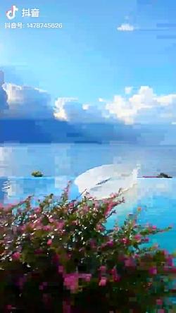 طبیعت  زیبای دریا
