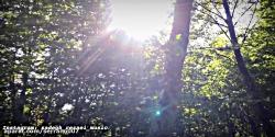 موزیک ویدئو دیوونه-صادق رضایی