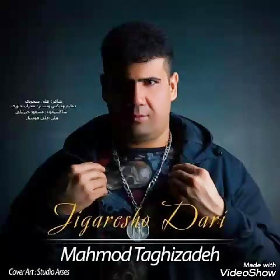 محمود تقی زاده زندگی چیست