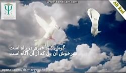 امام زمان (دکترمریم حاجیلو)