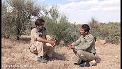 اینجا ایران - قسمت 78 - تاریخ : پخش 29 مهر 98