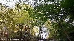 آبشار وَزن بن در سفیدمزگی شهرستان شفت