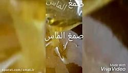 تولید کننده موم عربی و موم آدامس الماس