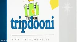 تریپدونی