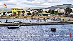 طبرقه تونس؛ بزرگترین صادر کننده مرجان آفریقا