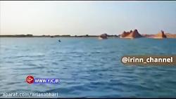 کویری بزرگ در ایران که تبدیل به دریایی زیبا شد
