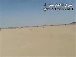 شکار غزال توسط سگهای شکاری سالوکی در یکی از کشورهای عربی