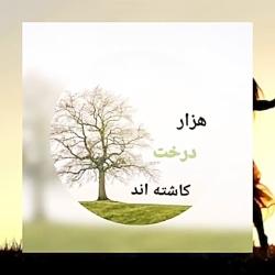 از صبح بخیر های من، رهام حاجی، خوانش شیدا حبیبی