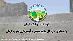 پروژه های صندوق توسعه ملی منابع طبیعی و آبخیزداری جنوب کرمان