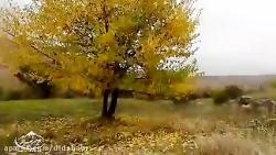 چشم نوازی پاییز در طبیعت اطراف غارهای بینه لر