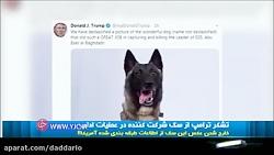 تشکر ترامپ از سگی که در عملیات حمله به رهبر داعش شرکت داشت
