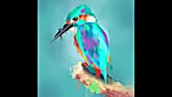 کفتر کاکل بسر های های !! تایم لپس طراحی پرنده