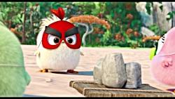 انیمیشن پرندگان خشمگین 2 دوبله فارسی اختصاصی Full HD