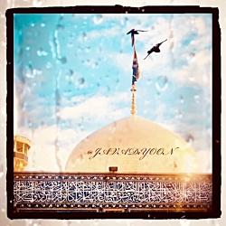 کلیپ کوتاه و زیبای پرواز به سوی حرم امام رضا علیه السلام - ۱۳۹۸