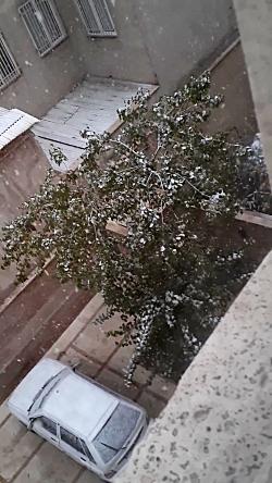 بارش برف بهاری در همدان...