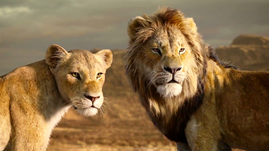 انیمیشن شیر شاه ۲۰۱۹ دوبله فارسی و زیرنویس فارسی (دوبله فارسی) (شیر شاه ۲۰۱۹)