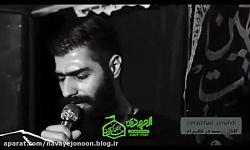 محمود عیدانیان - یا نفس زهرا یا زینب کبری - بسیارزیبا