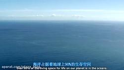 حقایق عجیب درباره نهنگ آبی - مستند Earth (زیرنویس فارسی)