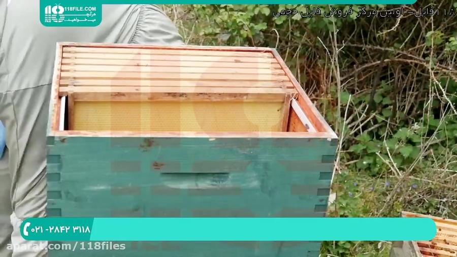 آموزش پرورش زنبور _ 118فایل 09130919448